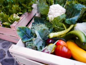 Almgrün Gemüsekistl