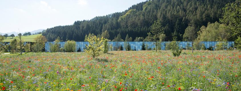 Grüne Erde-Welt Fassade mit Blumenwiese