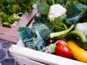 Bio-Gemüseverkauf