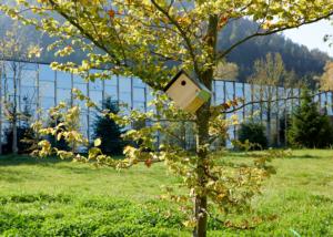 Grüne Erde-Welt Vogelhaus