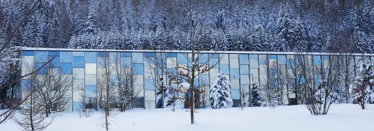 Winterstimmung in der Grüne Erde-Welt
