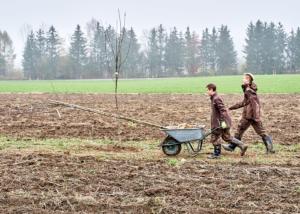 Grüne Erde-Welt – Agroforst Baumpflanzung LFS-Schlierbach I