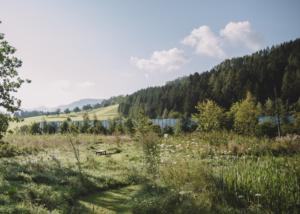 Grüne Erde-Welt – Aussenansicht