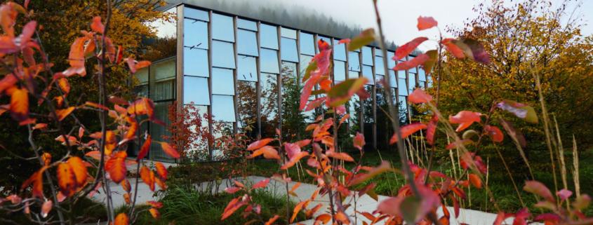 Grüne Erde-Welt im Herbst_Aussenansicht